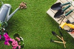 vista superiore delle attrezzature e dei fiori di giardinaggio sistemati immagine stock libera da diritti