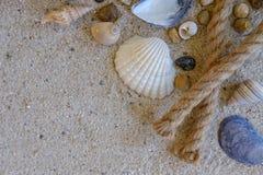 Vista superiore delle conchiglie con le rocce e corda sul fondo della sabbia Fotografie Stock