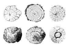 Vista superiore delle illustrazioni isolate dei ceppi di albero royalty illustrazione gratis
