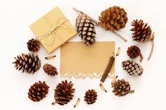Vista superiore delle pigne, del contenitore di regalo e della carta in bianco Fotografia Stock Libera da Diritti