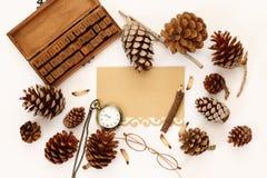 Vista superiore delle pigne, del contenitore di regalo e della carta in bianco Fotografie Stock