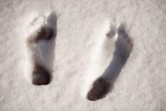 Vista superiore delle stampe del piede nudo nella neve immagini stock