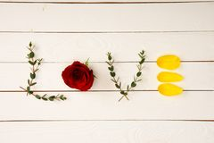 vista superiore di amore di parola fatta dagli elementi floreali Immagini Stock