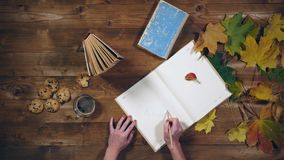 Vista superiore di concetto di autunno Libri, foglie di acero, tè sulla vecchia tavola di legno Note di scrittura della donna nel stock footage