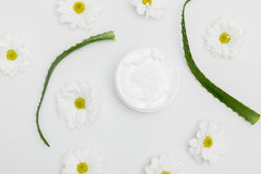 Vista superiore di crema naturale in contenitore, nelle foglie di vera dell'aloe ed in camomille Fotografia Stock