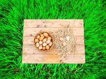 Vista superiore, di un canestro delle uova italiane fresche, con fieno, su un bordo di legno immagine stock libera da diritti