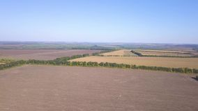 Vista superiore di un paesaggio rurale archivi video