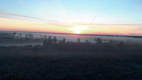 Vista superiore di volo aereo: Paesaggio nebbioso spettrale spaventoso di buio della natura di mattina - paesaggio nebbioso stock footage