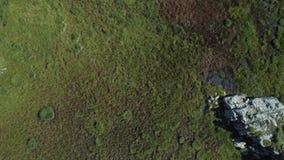 Vista superiore multipla sopra posizione all'aperto: legno della foresta, cascata, insenatura del fiume, villaggio, palude di est stock footage