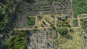 Vista superiore multipla sopra posizione all'aperto: mare, lago, costa, campo di agricoltura, legno della foresta, di estate Al d archivi video