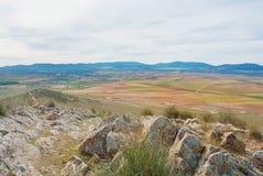 Vista superiore panoramica aerea astratta di un agricultura dell'azienda agricola del paese Immagine Stock Libera da Diritti