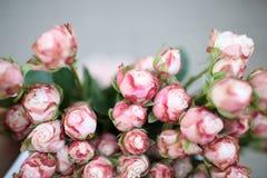 Vista superiore su un mazzo di mini rose rosa, macro fotografia stock