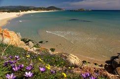 Vista surpreendente - praia de Chia - Sardinia Fotografia de Stock Royalty Free