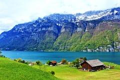 Vista Svizzera del lago Walensee Fotografia Stock Libera da Diritti