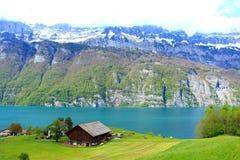 Vista Svizzera del lago Walensee Fotografie Stock