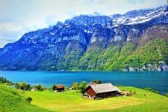 Vista Svizzera dell'azienda agricola della riva del lago Walensee Fotografia Stock