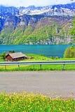 Vista Svizzera dell'azienda agricola della riva del lago Walensee Immagine Stock Libera da Diritti