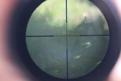 A vista telescópica imagem de stock