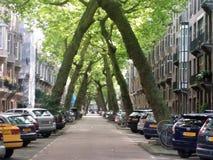 Vista tipica della via nel amsterdaml Fotografie Stock