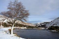 Vista tipica di inverno Fotografia Stock