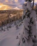 Vista tormentoso do inverno da capa da montagem em Oregon, EUA Imagem de Stock