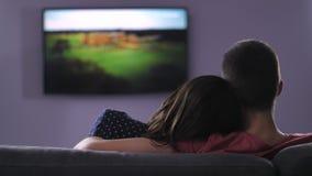 Vista traseira da tevê de observação do plazma dos pares na noite video estoque