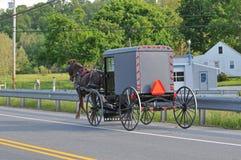 Vista traseira do cavalo e do carrinho de Amish fotos de stock