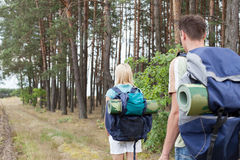 Vista traseira dos mochileiros novos que andam na fuga da floresta Fotografia de Stock Royalty Free