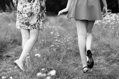Vista traseira nas jovens mulheres que andam no parque imagens de stock royalty free