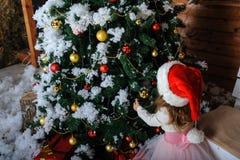 Vista trasera de la Navidad de adornamiento de la muchacha Imágenes de archivo libres de regalías