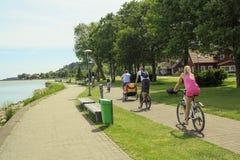 Vista trasera de las bicis que montan de la familia en un día de verano fotografía de archivo libre de regalías