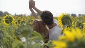 Vista trasera de los pares felices que llevan a cabo las manos en el campo del girasol La chica joven y su novio que se divierten almacen de metraje de vídeo