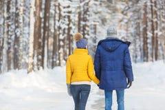 Vista trasera de pares jovenes en ropa brillante en un bosque en el invierno Imágenes de archivo libres de regalías