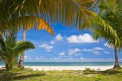 Vista tropical Imagens de Stock