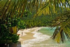 Vista tropical Imagem de Stock