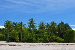 Vista tropical foto de stock royalty free