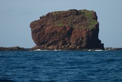 Vista tropicale, allerta di Lanai, Hawai Immagine Stock Libera da Diritti