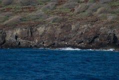 Vista tropicale, allerta di Lanai, Hawai Fotografia Stock