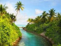 Vista tropicale con la palma Fotografia Stock