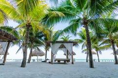 Vista tropicale di vacanza con le palme alla spiaggia sabbiosa esotica sul mar dei Caraibi Fotografia Stock Libera da Diritti