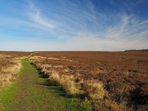 Vista of the moors under wispy clouds. Vista under wispy clouds on a bright sunny day across across North York Moors National Park, Yorkshire, UK Royalty Free Stock Photography