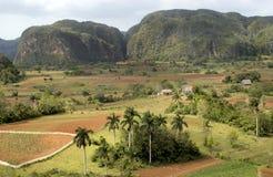 Vista a valle de vinales Fotografia Stock