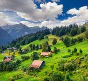 Vista variopinta di estate del villaggio di Wengen Fotografia Stock Libera da Diritti