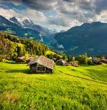 Vista variopinta di estate del villaggio di Wengen Fotografie Stock Libere da Diritti