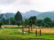 Vista veduta giardino verde Immagini Stock