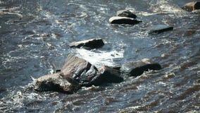 Vista veloce del fiume della montagna da sopra video d archivio