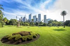 Vista verde di Sydney della città in giardino botanico reale Fotografia Stock