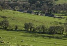 Vista verde - prati e un'azienda agricola, distretto di punta, Regno Unito immagine stock libera da diritti