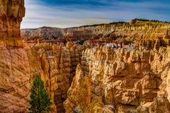 Vista verso Bryce Canyon Ampitheater nell'Utah Stati Uniti di A fotografie stock libere da diritti