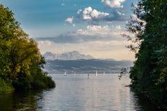 Vista verso le alpi svizzere dal confine tedesco del const del lago Fotografie Stock Libere da Diritti